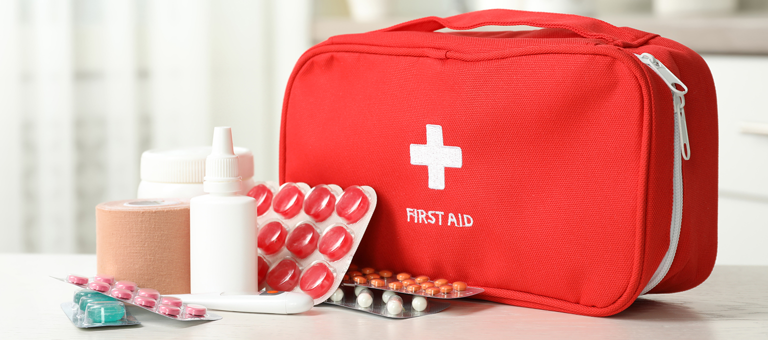 Concerns Of A Professional Finest Emergency Treatment Set